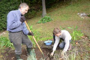 gardening back pain relief